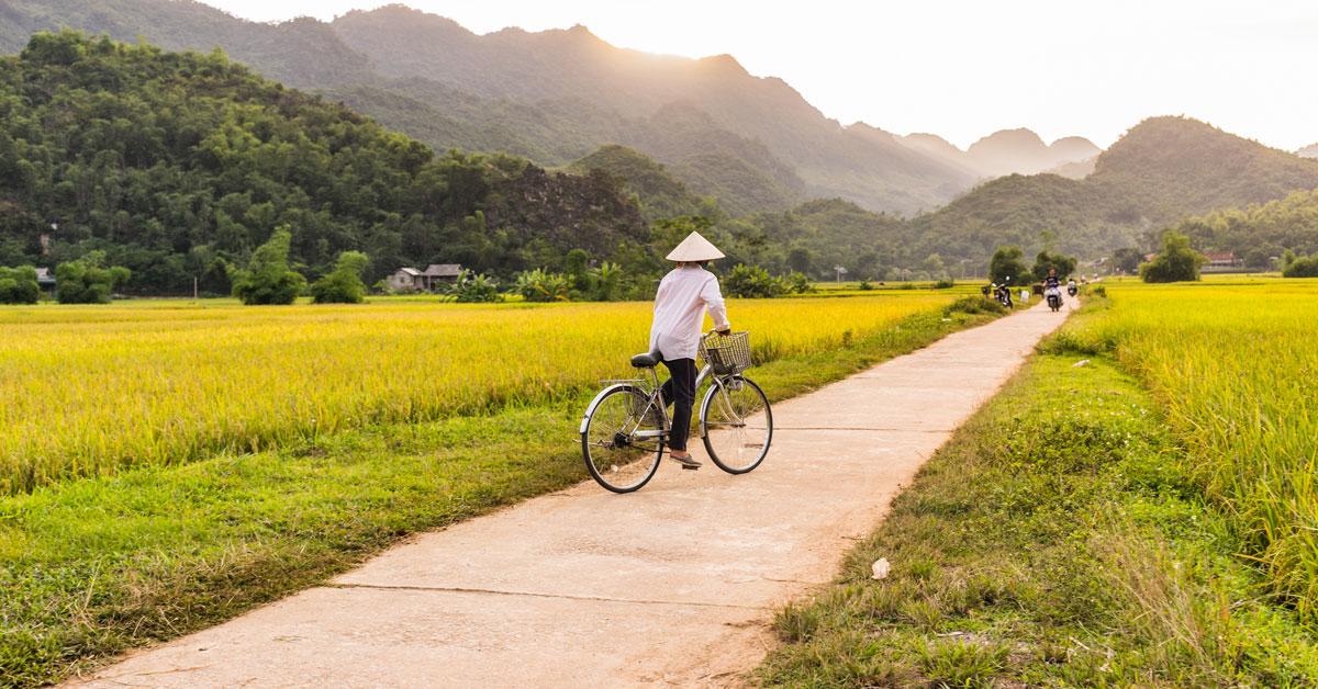 Photographie d'un homme en vélo dans les campagnes du Vietnam